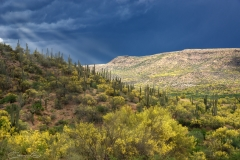 Arizona-Desert-with-Sun-Rays-through-Storm-Clouds